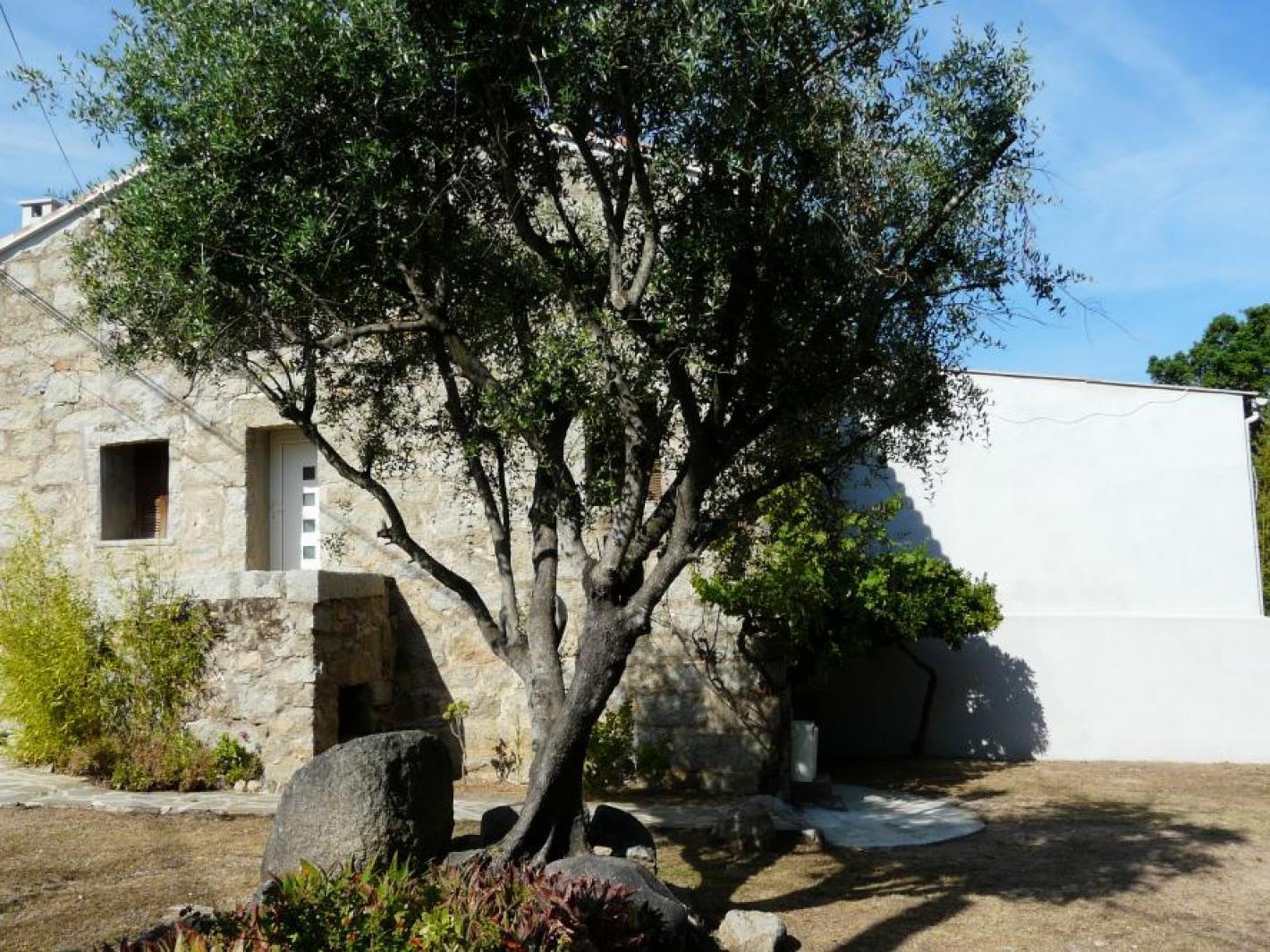 Maison authentique de village corse porto vecchio - Maison de village corse ...